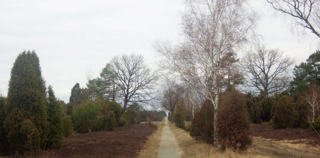 Rain or shine: Lauf durch die Lüneburger Heide