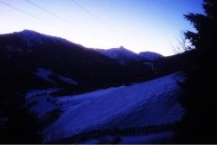 Brenner-2020-2
