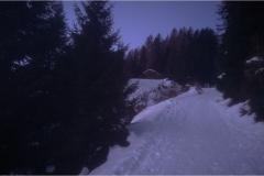 Brenner-2020-4