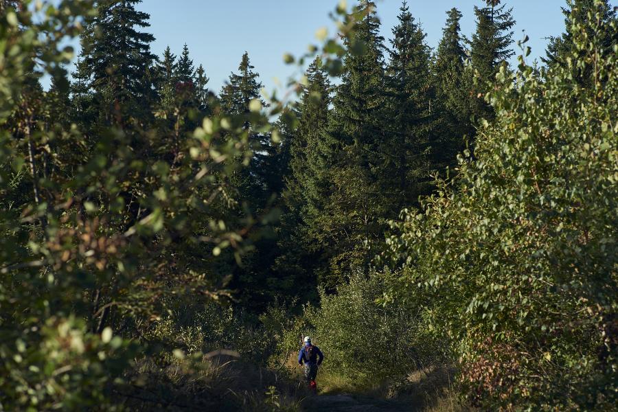 Und endlich - die Trails (c) Arberland Ultratrail / Marco Felgenhauer / Woidlife Photography