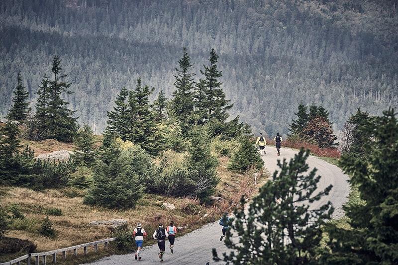 Landschaft genießen beim Arberland Ultrarun (c) Arberland Ultrarun