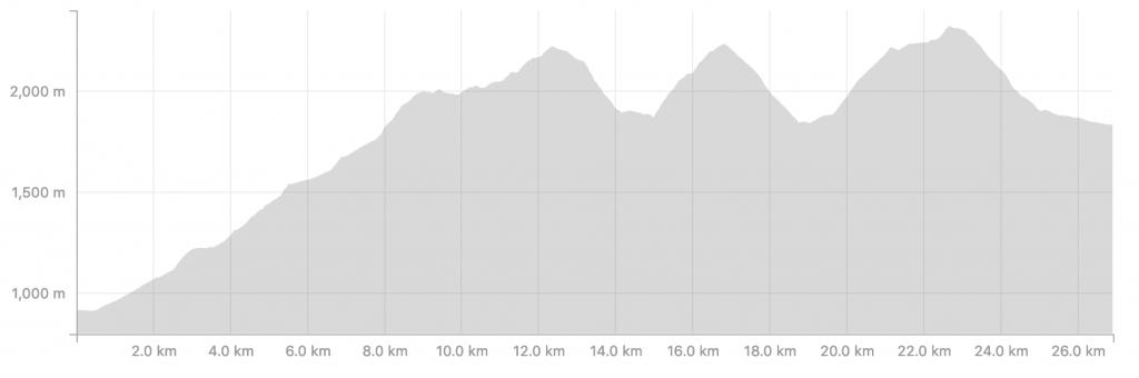 Transalpine Run 2019 - Profil der 8. Etappe (c) strava.com