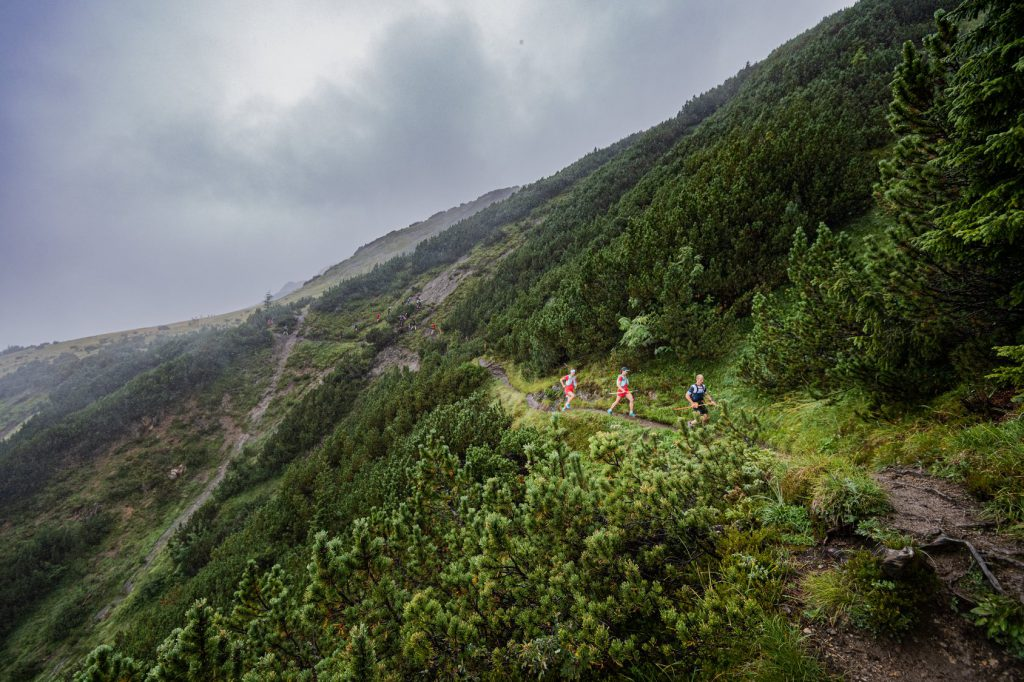 Transalpine Run 2019 - Bilderbuch-Trails auf Etappe 3 (c) PlanB / Harald Wisthaler