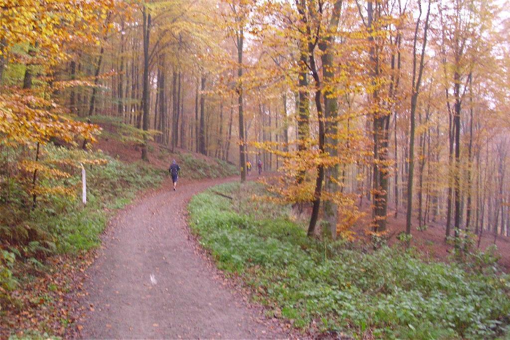 Herbst im Bergischen Land (c) Röntgenlauf 2011