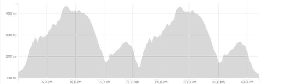 Höhenprofil des Kyffhäuser Berglauf Marathons 2020 (c) strava.com
