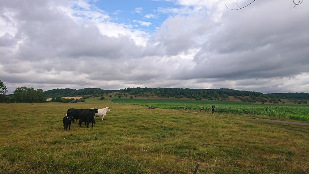 Schöne aber recht gemütliche Landschaft (c) Borderland