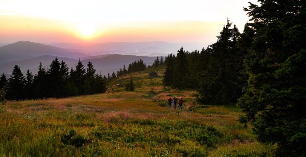 So ungefähr sieht es im Bayerischen Wald aus, wenn die Sonne mitspielt (c) U.TLW via Facebook